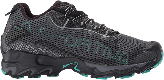 Wildcat 2.0 GTX as one of the best cross country shoes